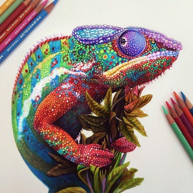 Ilustracoes realistas feitas apenas com lapis de cor (16)