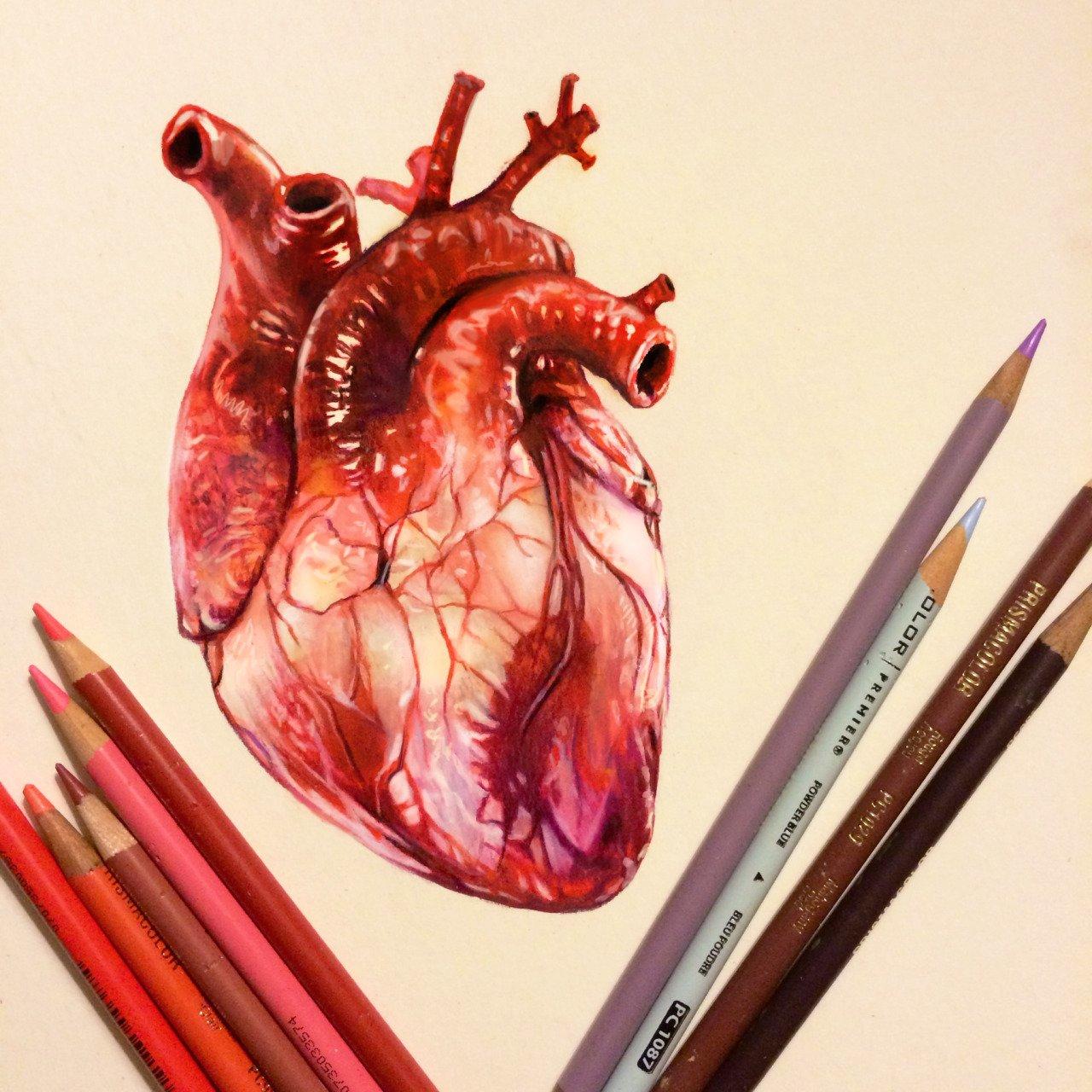 Ilustracoes realistas feitas apenas com lapis de cor (5)