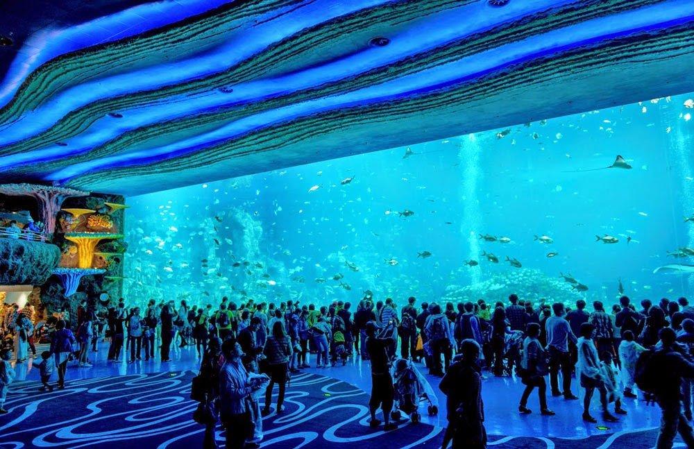 O maior zoologico do mundo (3)