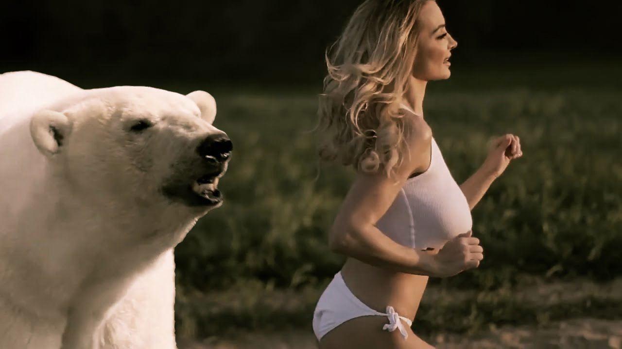 O que mulheres e ursos polares têm em comum