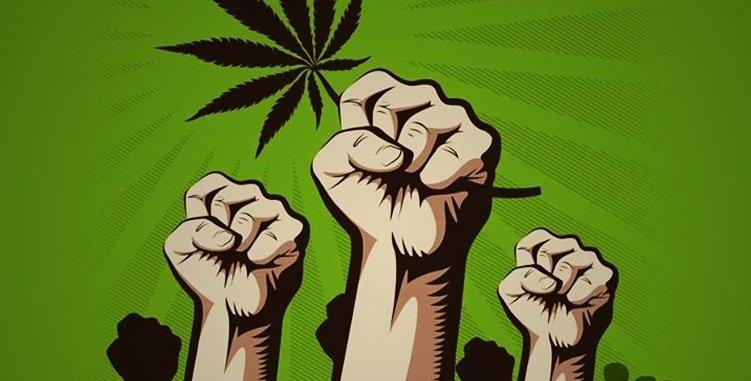 Você é a favor da guerra às drogas?
