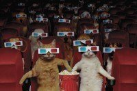 100 anos de gatos no cinema