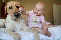 Bebê rindo histericamente com seu cachorro