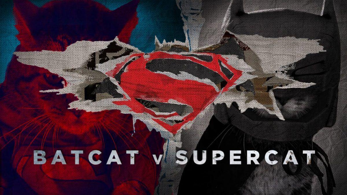 Batgato vs Super Gato