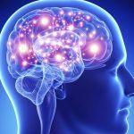 como treinar seu cerebro thumb
