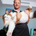 Samson o maior gato de Nova York