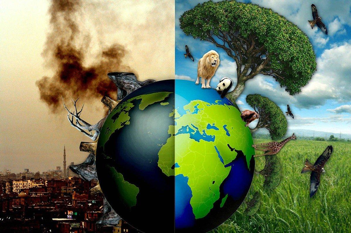 Cuidem do nosso planeta