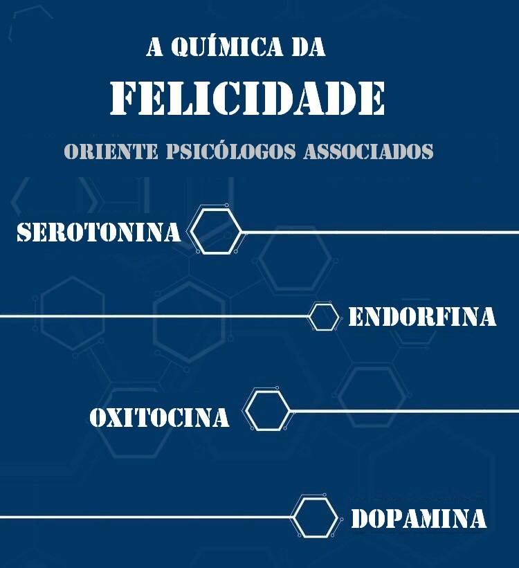a quimica da felicidade (1)