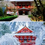 A beleza do inverno 12