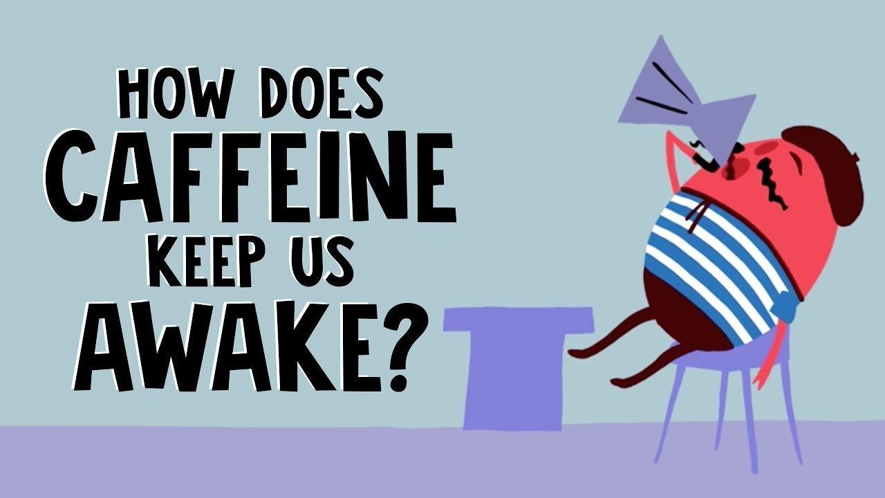 Como a cafeína nos mantém acordados?