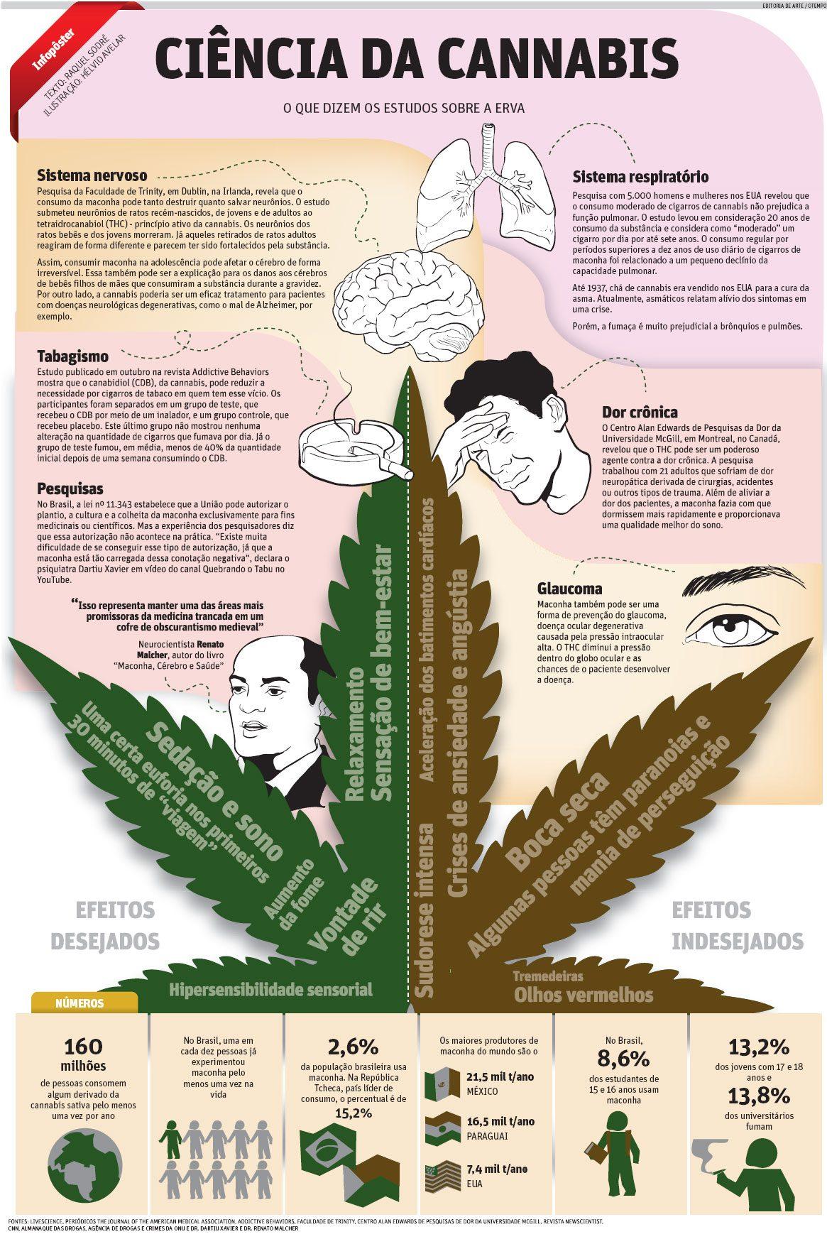 Ciência da Cannabis - O que dizem os estudos sobre a erva