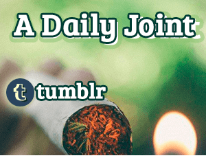Tumblr A Daily Joint