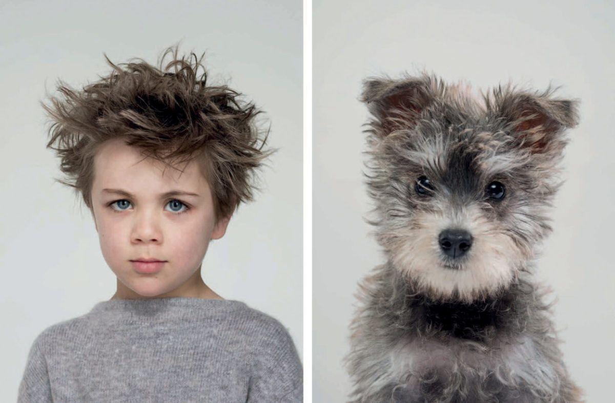 Animais se parecem com seus donos 1