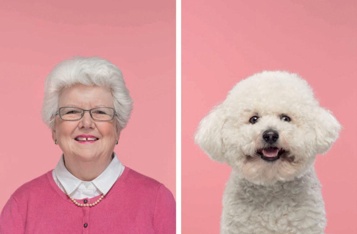 Animais se parecem com seus donos 3