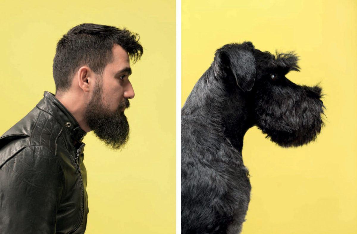 Animais se parecem com seus donos 5