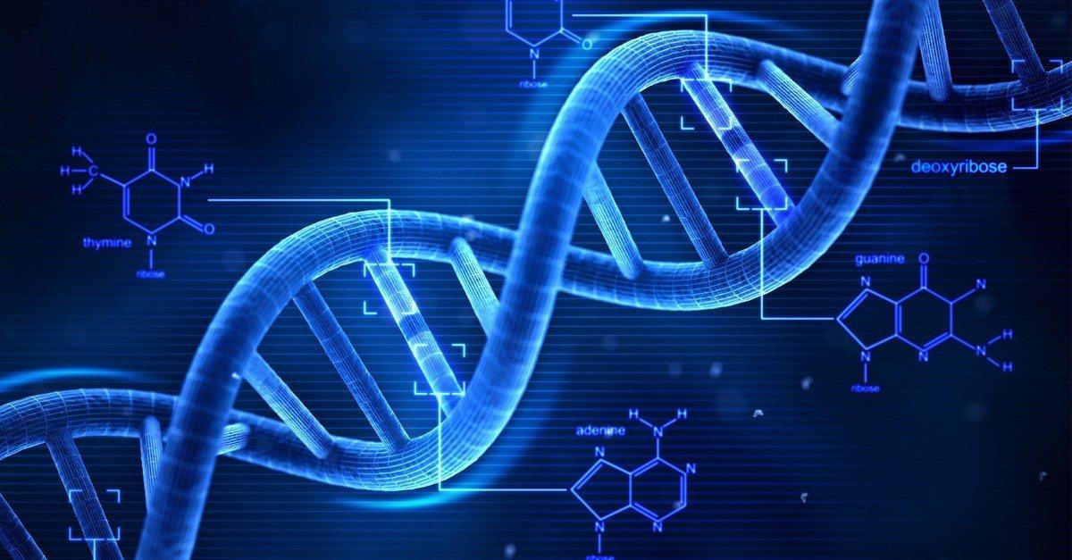 Descobertas recentes da ciência que vão te surpreender