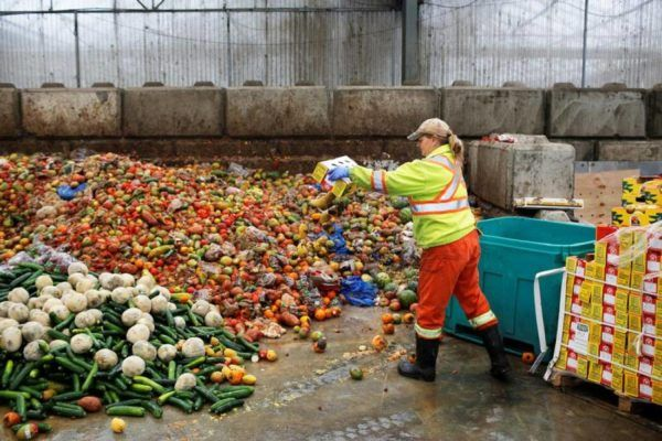 O desperdicio de comida