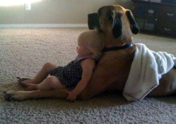 Cão de boas com a irmã