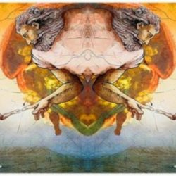 A Evolução da Humanidade x Evolução de Acordo com a Religião