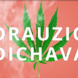 Drauzio Varella dichava: médico fala sobre a maconha