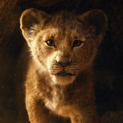 Saiu o Trailer do Rei Leão - Live Action