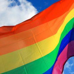 Bandeiras e suas Orientações Sexuais