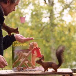 Geert Weggen: fotógrafo captura esquilos e resultados são incríveis