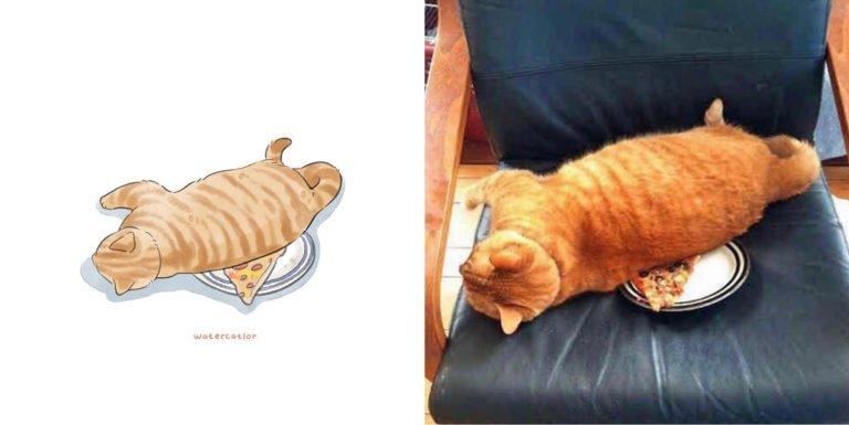 Memes de gatos artista ilustra situações felinas inusitadas e divertidas