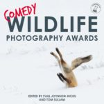 Prêmio de Fotografia da Vida Selvagem de 2019 fotografias mais engraçadas