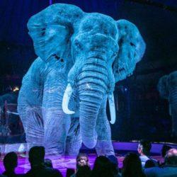 Circo alemão troca animais por hologramas em 3D