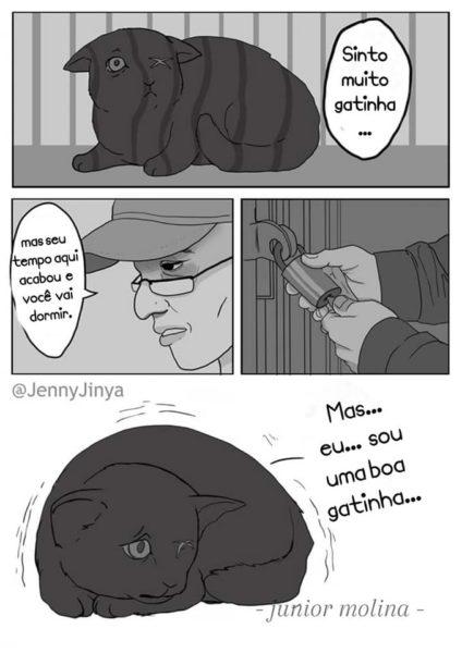 Jenny Jinya e uma linda história sobre amizade entre ser humano e gatos
