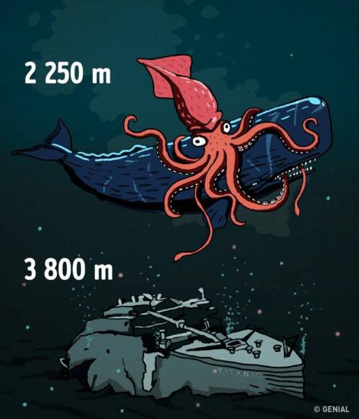 Profundidade do oceano: desvende alguns mistérios e curiosidades
