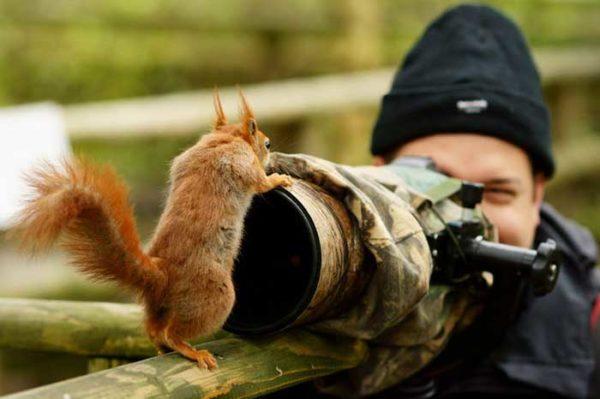 Veja porquê uma câmera é muito mais poderosa do que uma arma