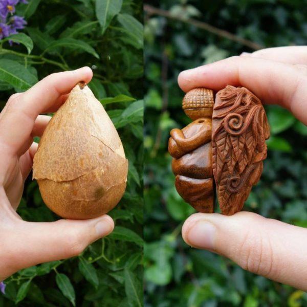 Jan Campbell transforma sementes de abacate em criaturas mágicas