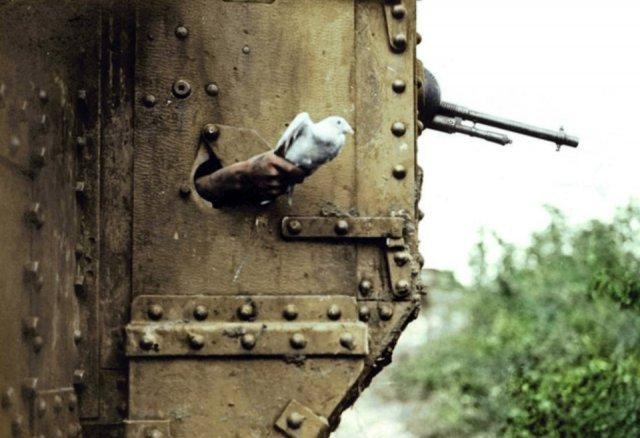 Fotos coloridas da Primeira Guerra Mundial 41