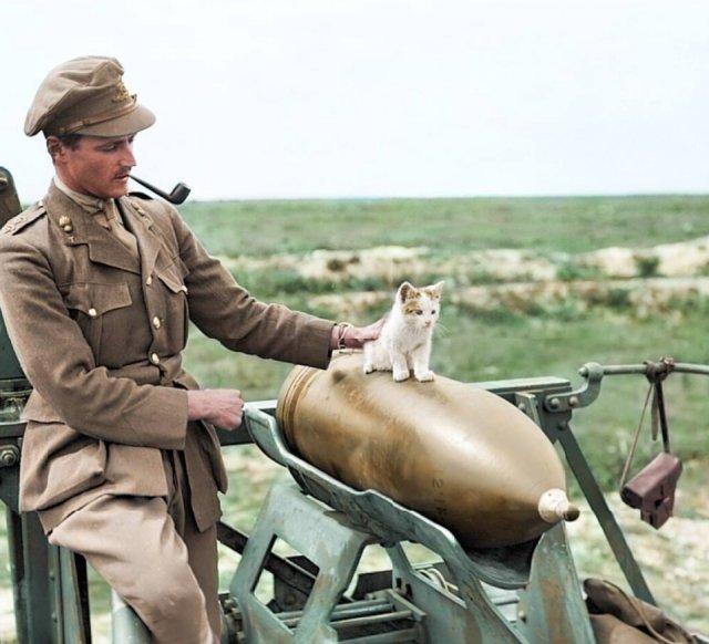 Fotos coloridas da Primeira Guerra Mundial 8