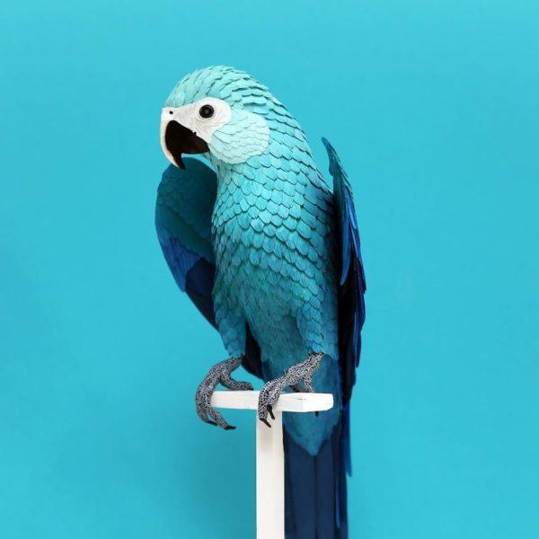 Diana Beltrán Herrera artista colombiana usa papel para recriar espécies de aves em todo o mundo 10