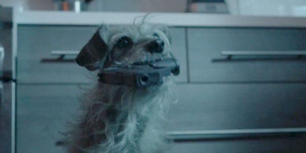 Dog Wick: chegou a hora da vingança sanguinária do cachorro de John Wick