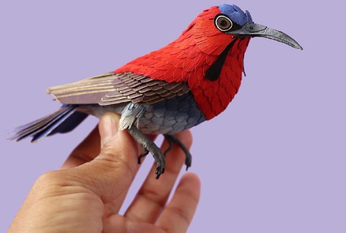 Diana Beltrán Herrera artista colombiana usa papel para recriar espécies de aves em todo o mundo 50