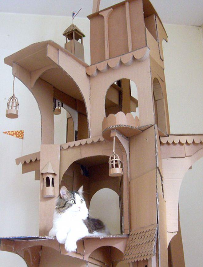 Donos de gatos estao criando fortes de papelao para seus animais 13