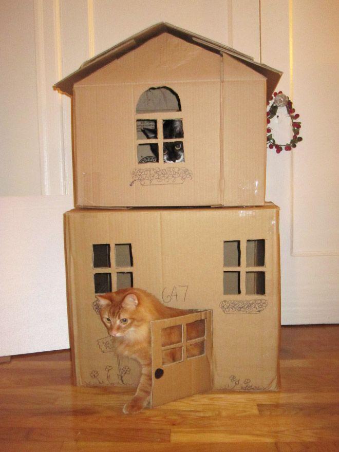 Donos de gatos estao criando fortes de papelao para seus animais 8