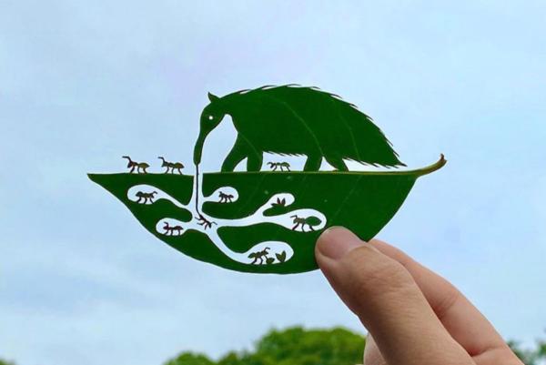 Lito Leaf art artista japones cria arte com folhas de arvores 1