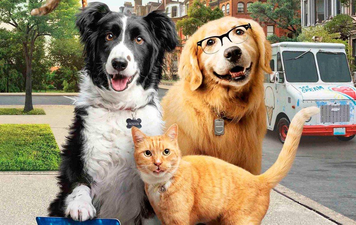 Cinema libera entrada de animais de estimação em sessão Drive-In