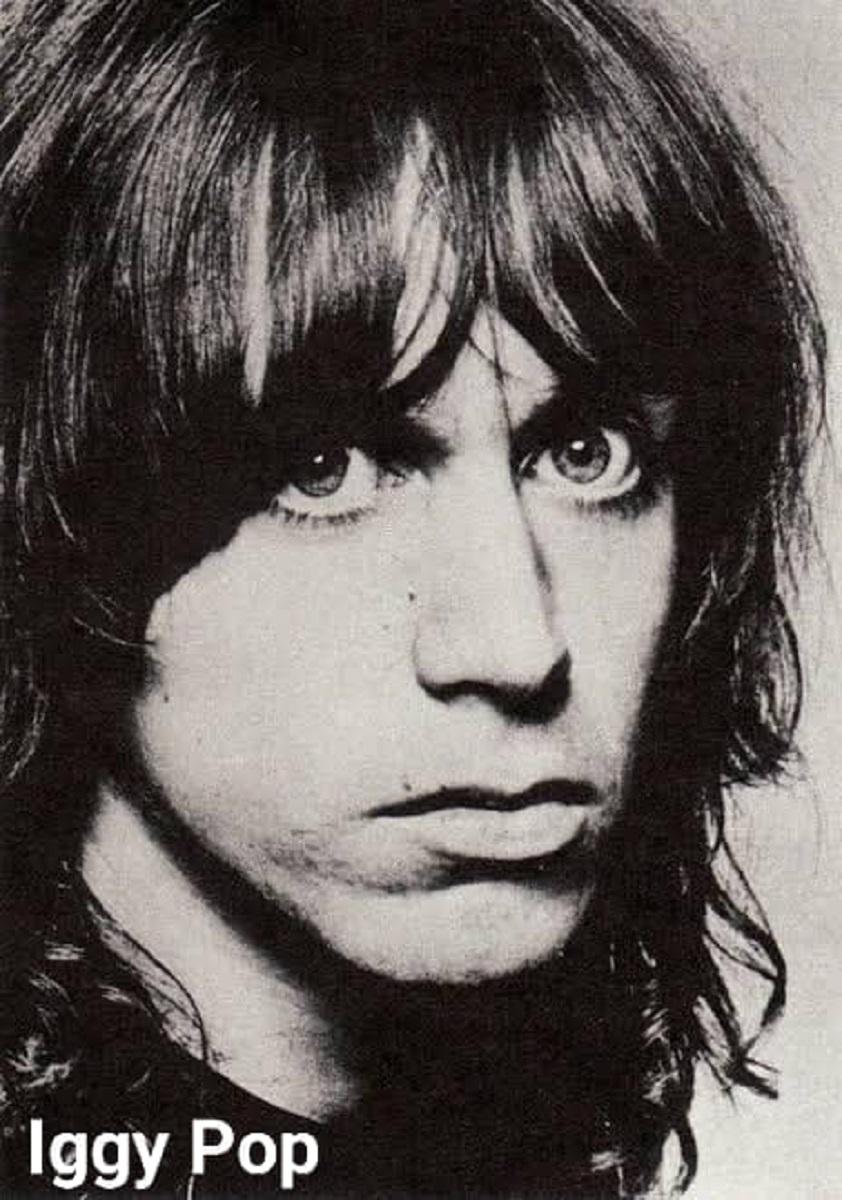 Estrelas do rock na juventude 27