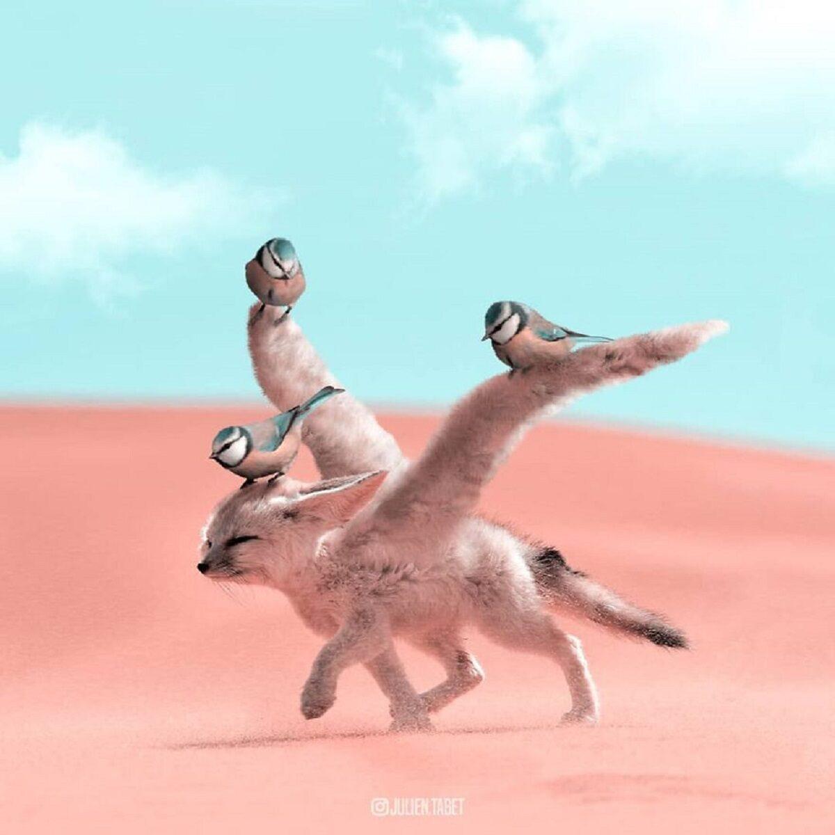 Julien Tabet artista mostra o que os animais fazem quando nao estamos olhando 14
