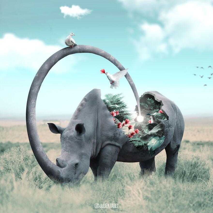Julien Tabet artista mostra o que os animais fazem quando nao estamos olhando 22