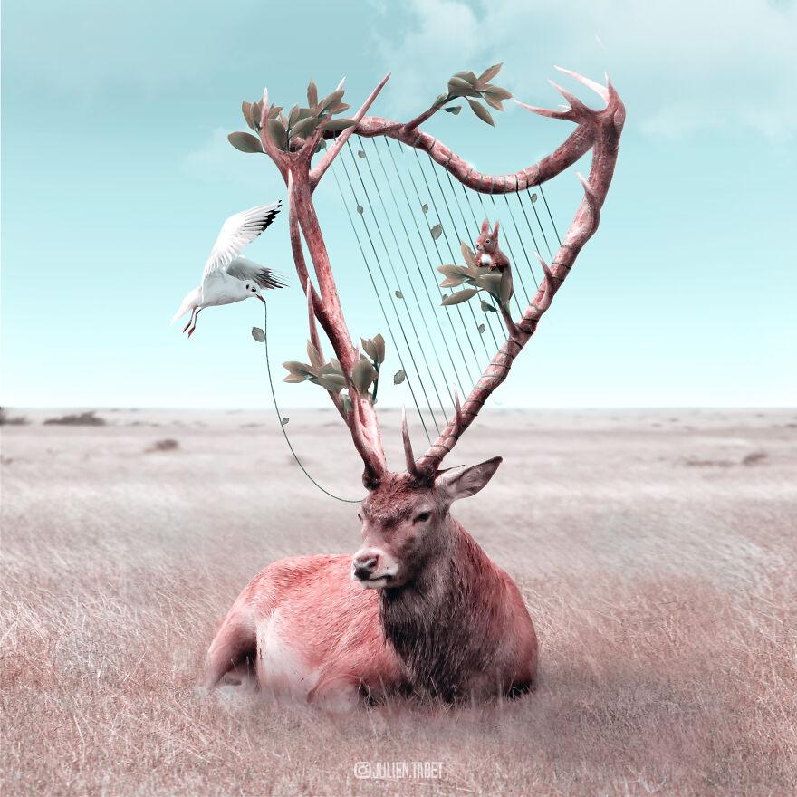 Julien Tabet artista mostra o que os animais fazem quando nao estamos olhando 25