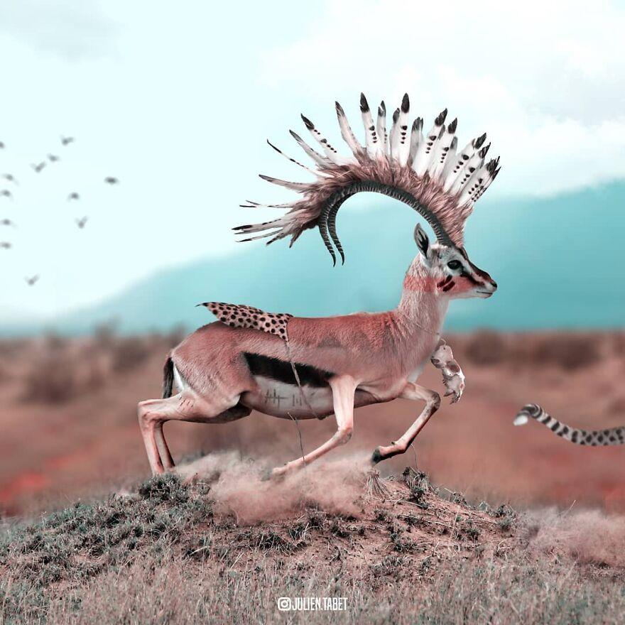 Julien Tabet artista mostra o que os animais fazem quando nao estamos olhando 26