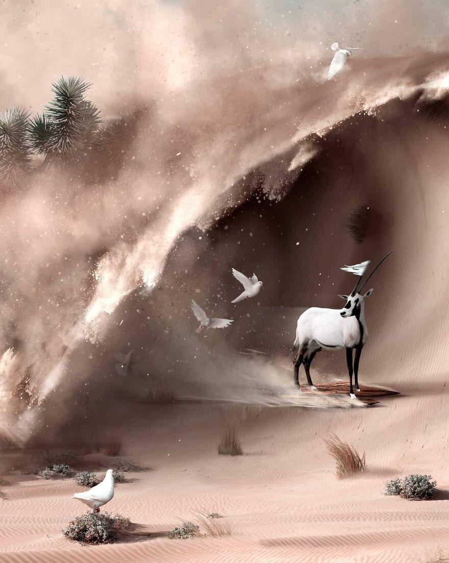 Julien Tabet artista mostra o que os animais fazem quando nao estamos olhando 27