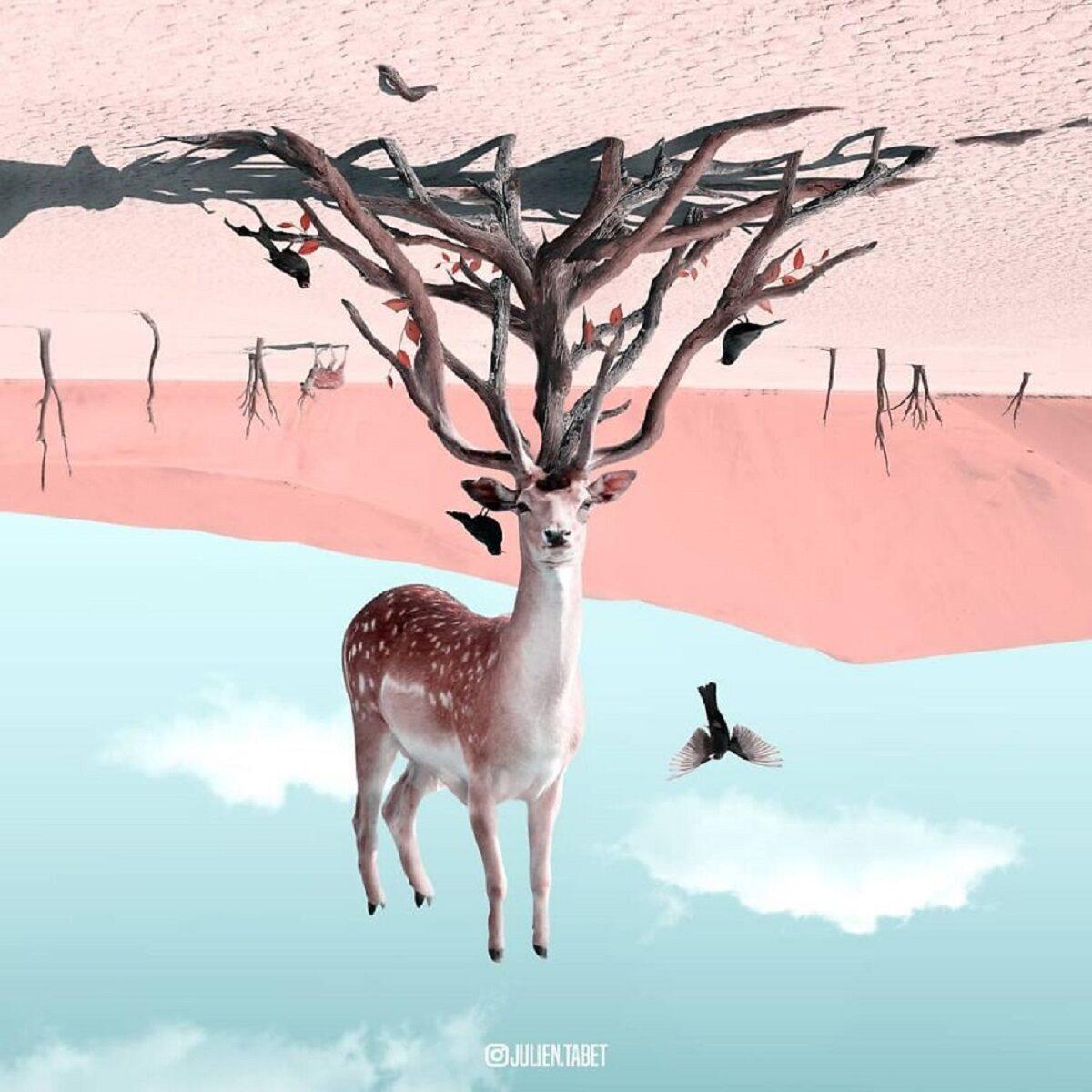 Julien Tabet artista mostra o que os animais fazem quando nao estamos olhando 30